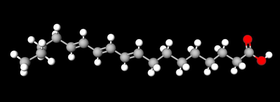 《ALD患者的敌人:极长链脂肪酸(VLCFA)》